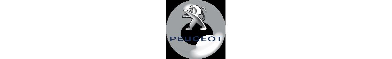 PEUGEOT - OTRAS MARCAS - Art Motor Sport
